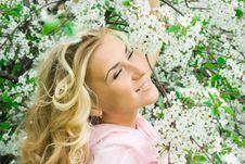 Free Springtime Cherry Royalty Free Stock Photos - 8761438