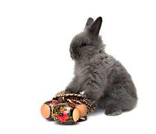 Free Easter Bunny 3 Stock Photos - 8761473