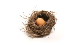 Free Egg In The Nest Stock Images - 8762054