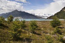 Free Glacier And Lake Tierra Del Fuego Stock Image - 8762991