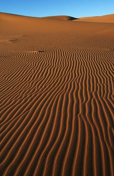 Free Dune Surface. Stock Photography - 8765222