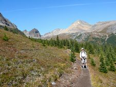 Free Hiking In The Canadian Rockies Royalty Free Stock Photos - 8765438