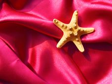 Free Starfish On Silk Fabric Royalty Free Stock Photos - 8766178