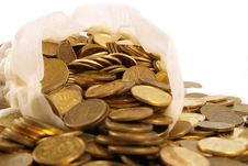 Free A Bag Droped Out With A Coins Stock Images - 8766294