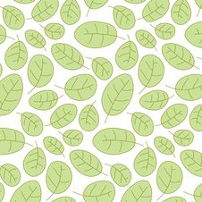 Free Cowberry Leafs Seamless Pattern Royalty Free Stock Image - 8768506