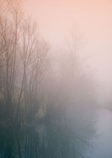 Free Foggy Morning Royalty Free Stock Photography - 8769767