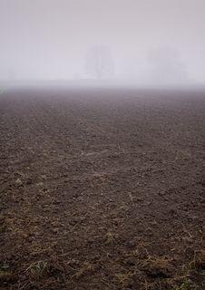 Free Foggy Morning Stock Photo - 8771110