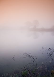 Free Foggy Morning Royalty Free Stock Images - 8771189