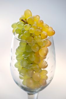 Free Grapes In Wine Glass Stock Photos - 8772323