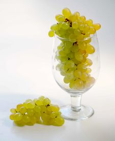Free Grapes With Wine Glass Stock Photo - 8772330