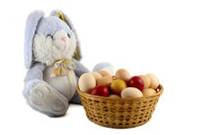 Free Easter Rabbit Royalty Free Stock Photos - 8773078