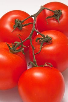 Free Fresh Tomato Royalty Free Stock Images - 8774339