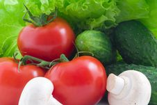 Free Vegetables Royalty Free Stock Photos - 8776838