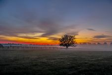 Free Meadow At Dawn Stock Image - 87780531