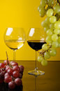 Free Two Glasses And A Bottle Of Wine Stock Photo - 8789380