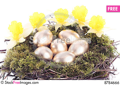 Golden eggs and daffodils in bird nest over white Stock Photo