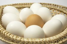 Free Eggs In A Basket Royalty Free Stock Photos - 8780228