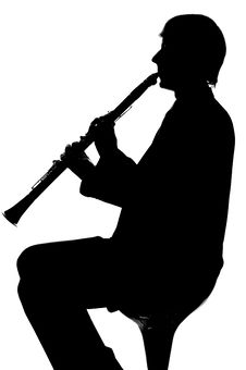 Free Musician Royalty Free Stock Photography - 8781177