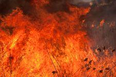 Free Burning Flame Royalty Free Stock Photos - 8781428