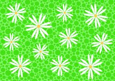 Free Abstract Background With Daisy Royalty Free Stock Photography - 8782917