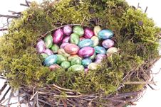 Free Easter Eggs  In Bird Nest Detail Royalty Free Stock Photos - 8784598