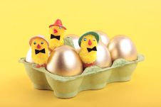 Golden Easter Eggs And Chicks In Carton Royalty Free Stock Photo