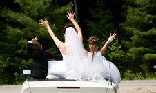 Free White Bride Stock Photos - 8786753