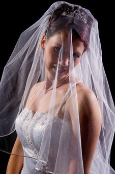 Free White Bride Stock Image - 8786951