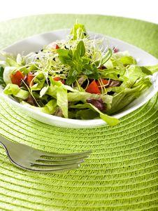 Free Salad Royalty Free Stock Photos - 8788818