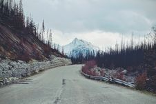 Free Road Through Forest In Mountains Royalty Free Stock Photography - 87857437