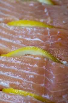 Free Rainbow Trout Fillet Stock Photo - 87857630