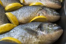 Free Sea Bream Fishes Ready To Be Baked In Oven With Lemon Wedges. Royalty Free Stock Images - 87857699