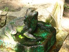Free Stone-fountain-frog Stock Photography - 87858482