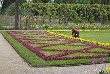 Free Gardener Planting Flowers Stock Photos - 87863233