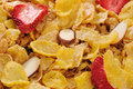Free Macro Of Cornflakes With Fruits And Nuts Royalty Free Stock Photos - 8795358