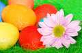 Free Green Easter Composition. Stock Image - 8795761