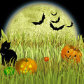 Free Halloween Royalty Free Stock Photo - 8796205