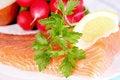 Free Fresh Salmon Royalty Free Stock Images - 8798389