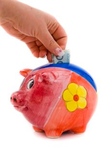 Free Piggy Bank With 100 Zloty Stock Photography - 8790432
