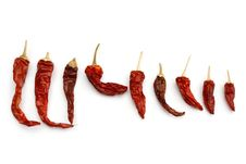 Free Dried Chillies. Stock Image - 8790741