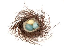Free Bird S Nest With Eggs Stock Photos - 8791043