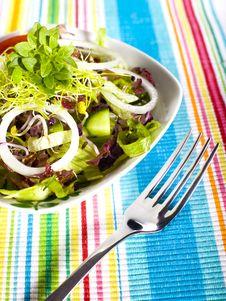 Free Salad Stock Image - 8791531