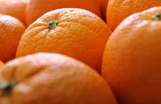 Free Orange Fruits Royalty Free Stock Photo - 8794865