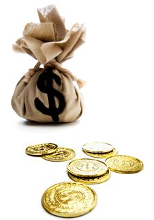 Free Us Coins With A Sack Royalty Free Stock Image - 8795056