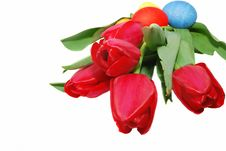 Free Eggs And Big Tulips Royalty Free Stock Image - 8795806