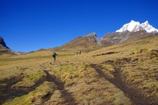 Free Hikers On Trail In High Andes Royalty Free Stock Image - 8797146