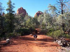 Free Cibola Pass Trail Royalty Free Stock Image - 87957486