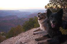 Free Grand Canyon North Rim Royalty Free Stock Images - 87958009