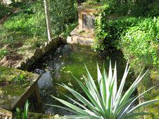 Free Garden Pool Stock Image - 87962281