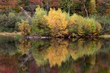 Free Autumn Trees Reflecting From Lake Stock Photos - 87962663